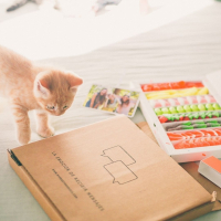 ¿Cómo se llaman vuestras mascotas? 😻  #SweetMessages #Golosinas #MomentoSweet 
